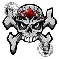 Streetfighter Skull and Crossbones (Red) Motografix Tank Pad