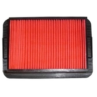 Yamaha YZF-R125 (2008 to 2014) Hiflo Air Filter