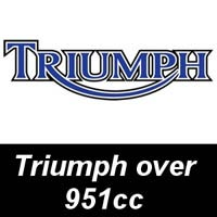 Triumph Oil Filters - over 951cc